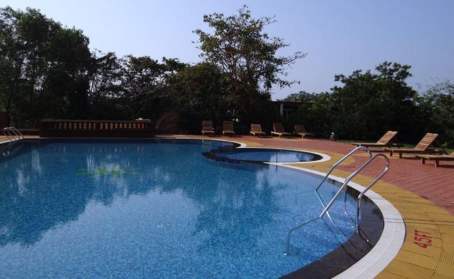 contrat d'entretien piscine