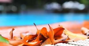 Hivernage d'une piscine : conseils hivernage passif et hivernage actif
