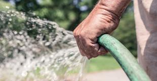 Peut-on utiliser l'eau de sa piscine pour arroser ses plantes et son jardin ?